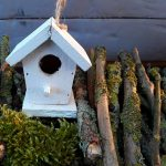 Photo of a wooden birdhouse
